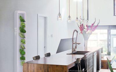 Luces LED y una receta para cada planta